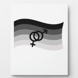 STRAIGHT FLAG WAVING WITH SYMBOL DISPLAY PLAQUES
