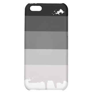 Straight Pride Colors iPhone 5C Cover