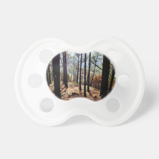 Straight trees on a tilted hill pacifier