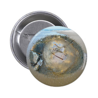Stranded Jellyfish Series Coordinating Iems Pinback Button
