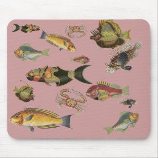 Strange Fish Mouse Pads