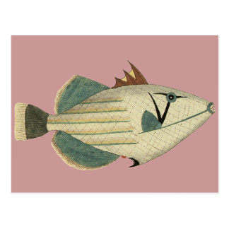 Strange Pale Fish Postcard