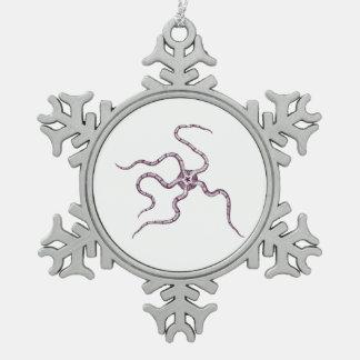 Strange Sea Creatures - Ophiura o. serpent star Ornaments