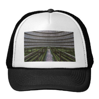 Strange stucture in cicural shape trucker hat