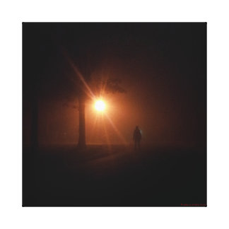 Stranger in the Night Canvas Print