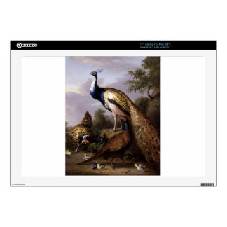 "STRANOVER, Tobias birds peacock animals vintage Decal For 17"" Laptop"