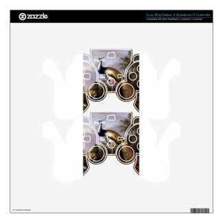STRANOVER, Tobias birds peacock animals vintage PS3 Controller Decals