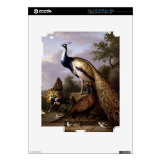 STRANOVER, Tobias birds peacock animals vintage Skins For iPad 2