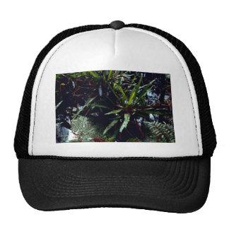 Strap Fern Trucker Hat