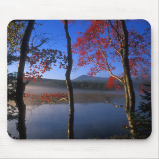 Stratton Brook Pond Bigelow Preserve Maine Mousepad