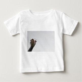 strauss-101 camisas