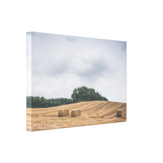 Straw bales on a rural field in cloudy weather canvas print