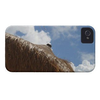 Straw Beach Umbrella iphone 4 Case