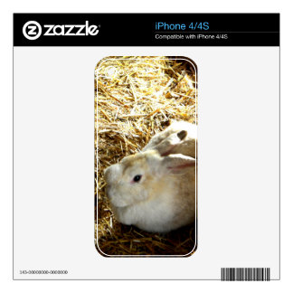 Straw Bunny Skins For The iPhone 4
