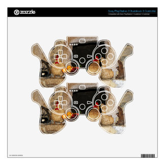Straw chickens and fruit on mantelpiece, Spain PS3 Controller Skins
