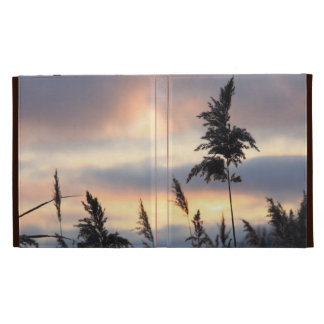 Straw in sunset iPad case