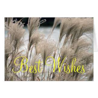 Straw in winter, Best Wishes Card