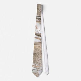 Straw in winter neck tie