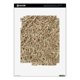 Straw Skin For iPad 3