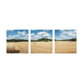 Straw you bleat in Sarthe department Canvas Print