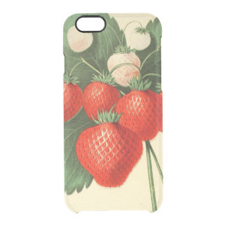 Strawberries Clear iPhone 6/6S Case