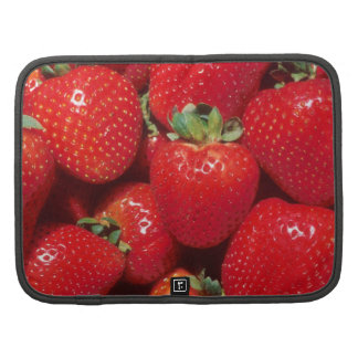 Strawberries Close-Up Folio Planner