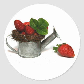 strawberries in a small watering can classic round sticker