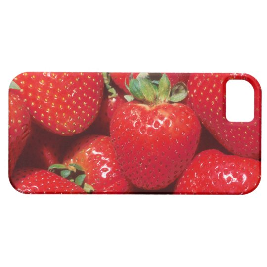 Strawberries iPhone SE/5/5s Case