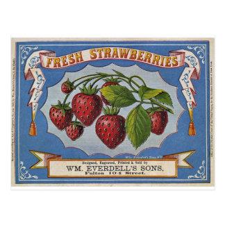 Strawberries Postcard