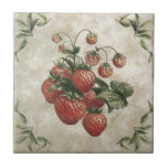 "Strawberries Rustic Ceramic Tile<br><div class=""desc"">This rustic ceramic tile features a botanical illustration of ripe strawberries!</div>"