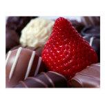 Strawberry and Chocolates Postcard