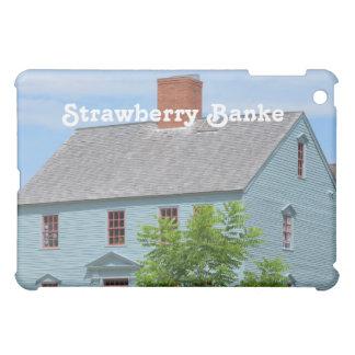 Strawberry Banke iPad Mini Case