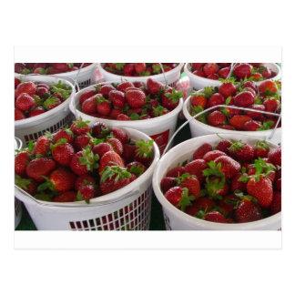 strawberry basket postcard