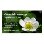 Strawberry Blossom Appointment Card Double-Sided Standard Business Cards (Pack Of 100)