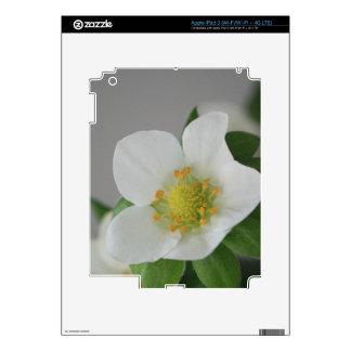 Strawberry Blossom Skin For iPad 3