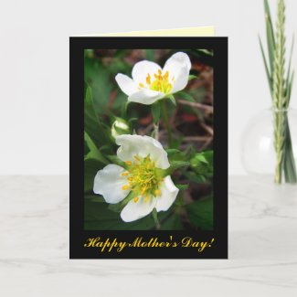Strawberry Blossoms for Mother's Day zazzle_card