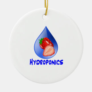 Strawberry, Blue Text Blue Drop Hydroponics Double-Sided Ceramic Round Christmas Ornament