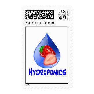 Strawberry, Blue Text Blue Drop Hydroponics Postage Stamp