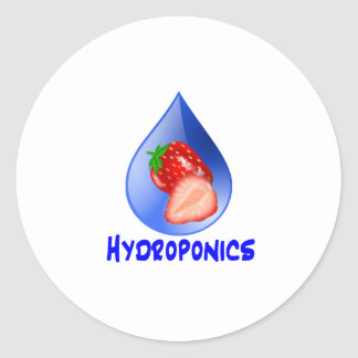 Strawberry, Blue Text Blue Drop Hydroponics Round Sticker