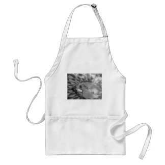 Strawberry Fields Adult Apron