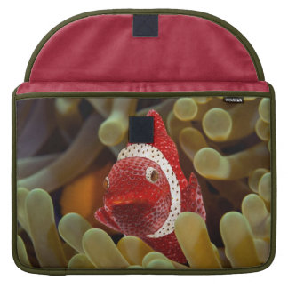 strawberry fish sleeves for MacBooks