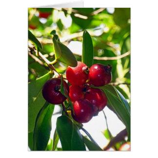 Strawberry Guavas Card