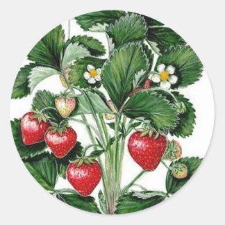 Strawberry Jam Jar Lid Label Classic Round Sticker