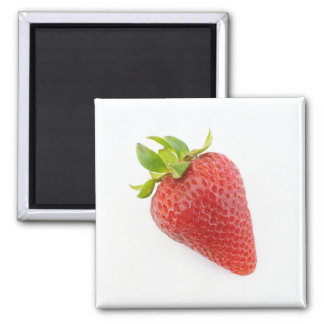 Strawberry Magnet 03
