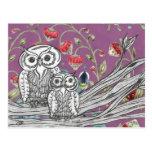 Strawberry Owls Postcard