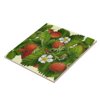 Strawberry Patch Ceramic Tile