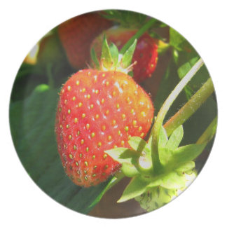 Strawberry Patch Plate