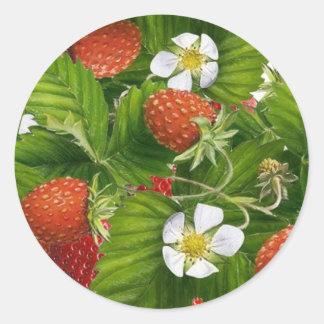 Strawberry Patch Classic Round Sticker