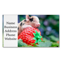 strawberry pig business card magnet