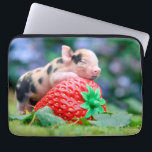 "strawberry pig computer sleeve<br><div class=""desc"">pig,  &quot;baby pig&quot;,  piglet,  piggy,  &quot;pig strawberry&quot;, &quot; pig animal&quot;,  pork,  strawberry,  &quot;pig swine&quot;,  swine</div>"